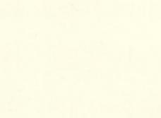 Светло-кремовый глянец 1106